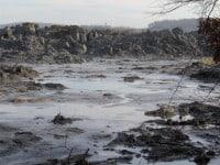 Kingston plant spill